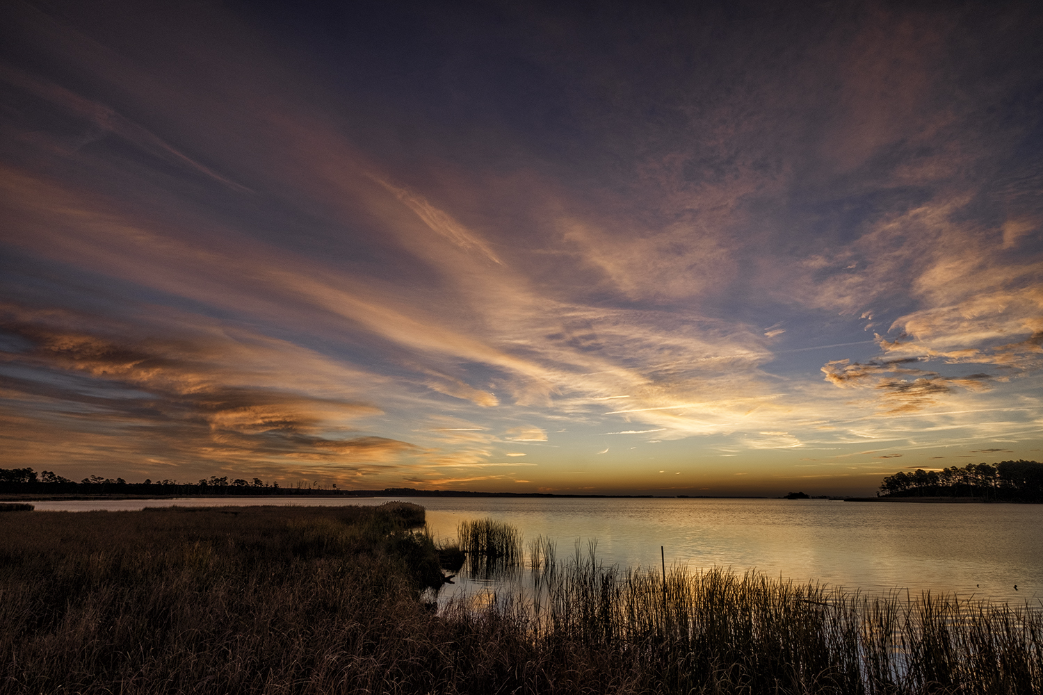 Blackwater NWR, November Sunrise