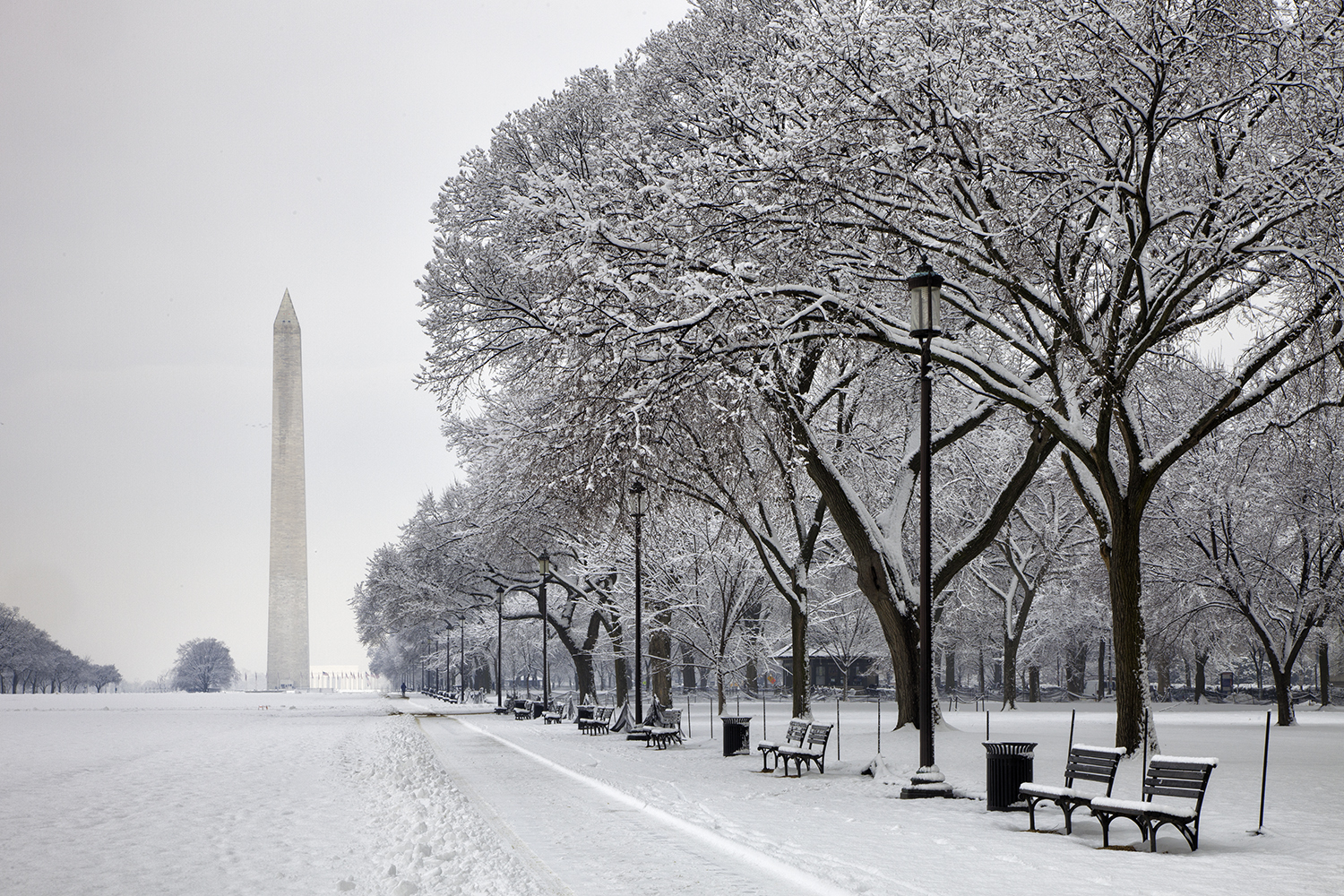 February Morning on the Mall