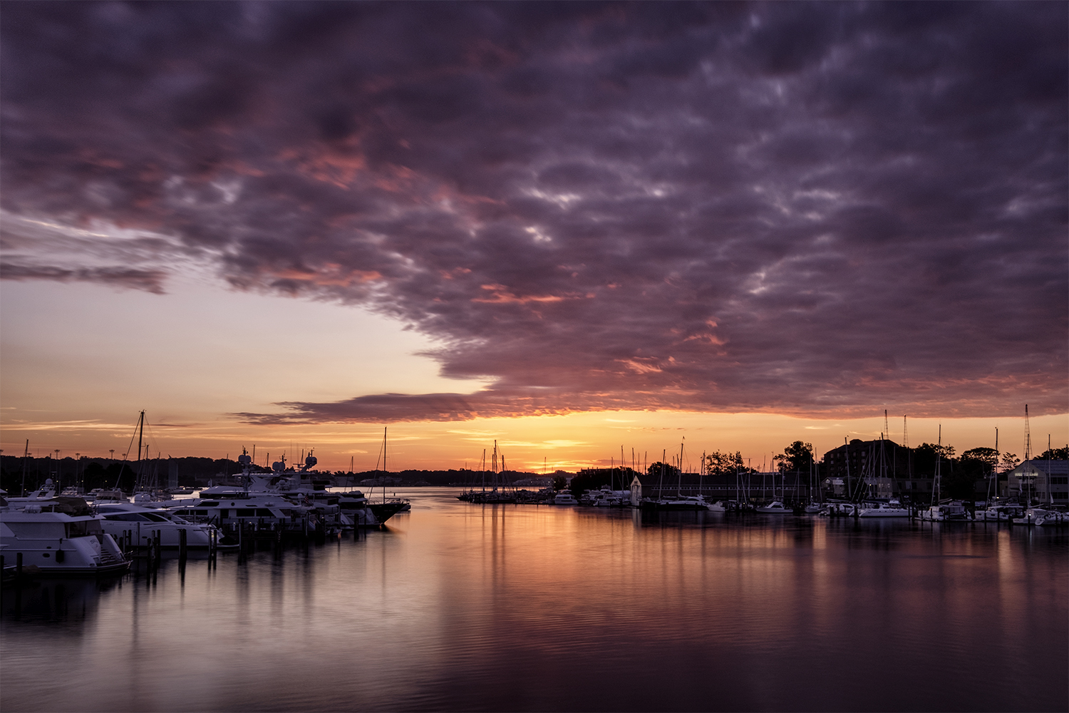 Annapolis, June Sunrise