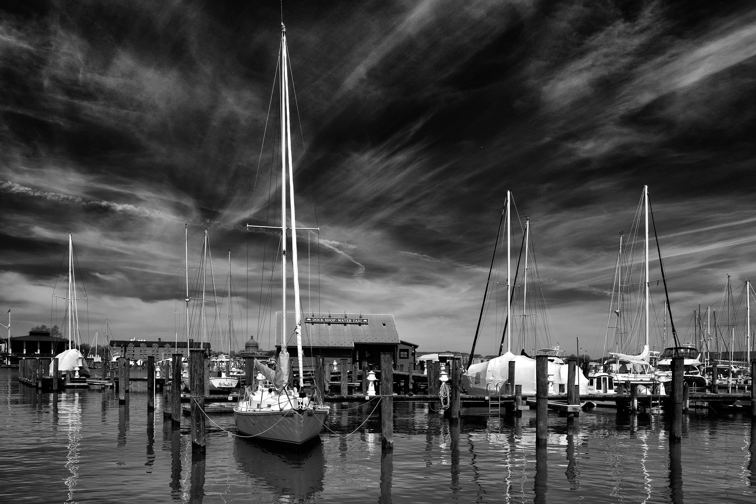 190327 Annapolis Maritime Museum 07-1 bw.jpg