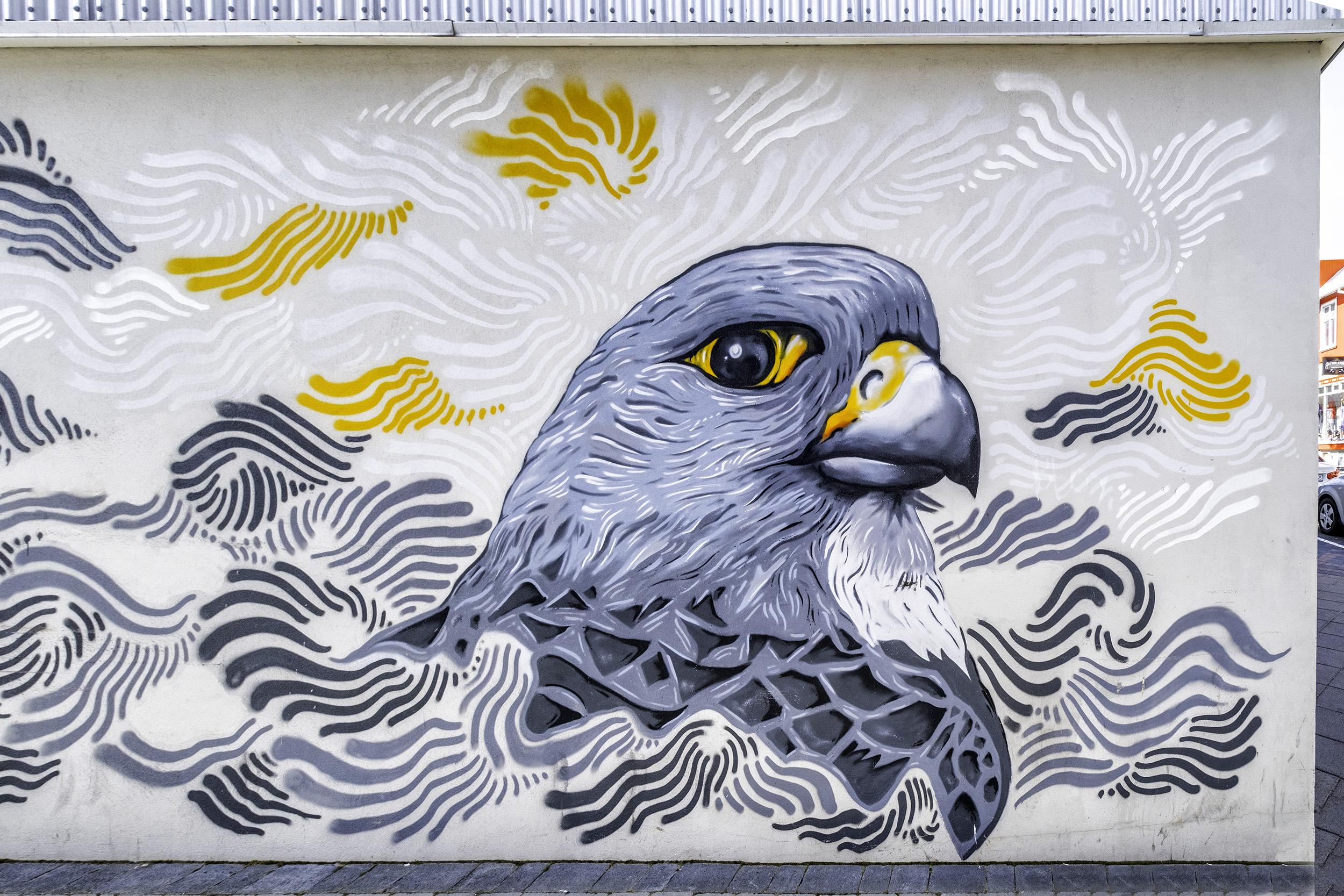 Reykjavik Street Art