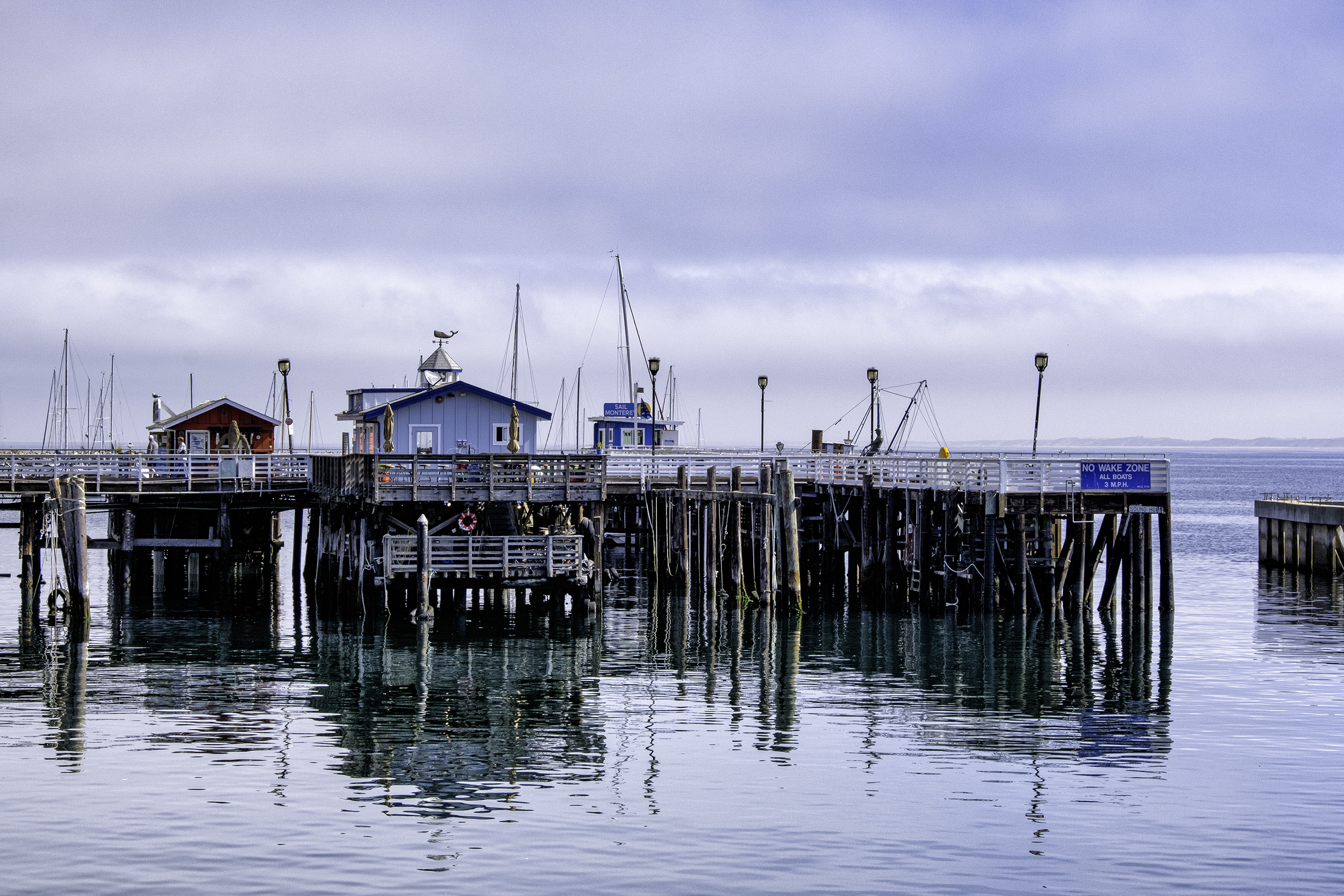 Monterey Harbor, August Morning