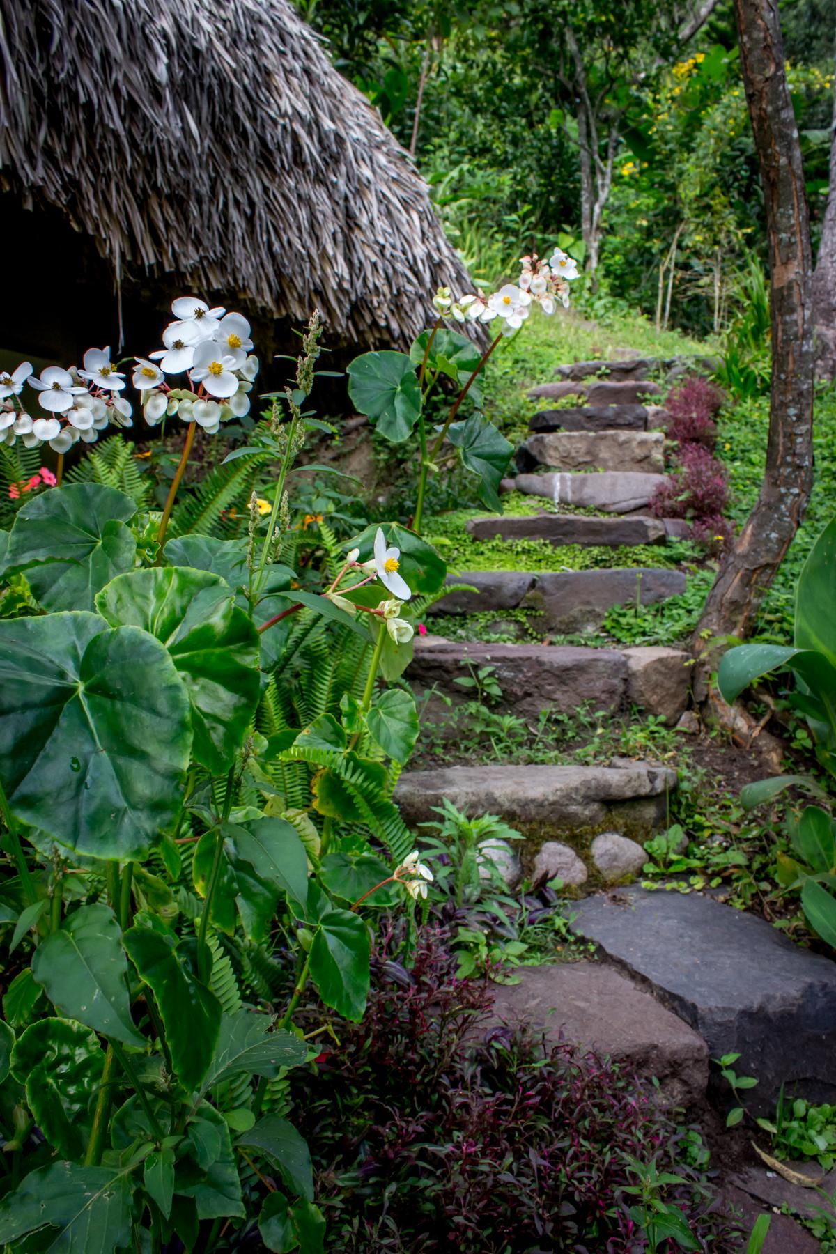 Paths -1499.jpg