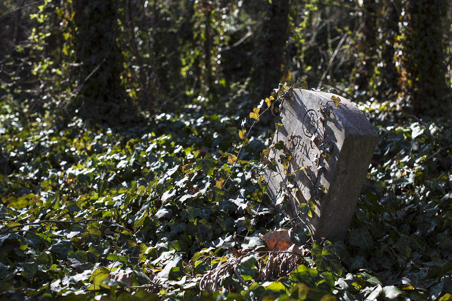 Web_20150119_East_End_Cemetery_work_day_Richmond_VA_5D_0254.jpg