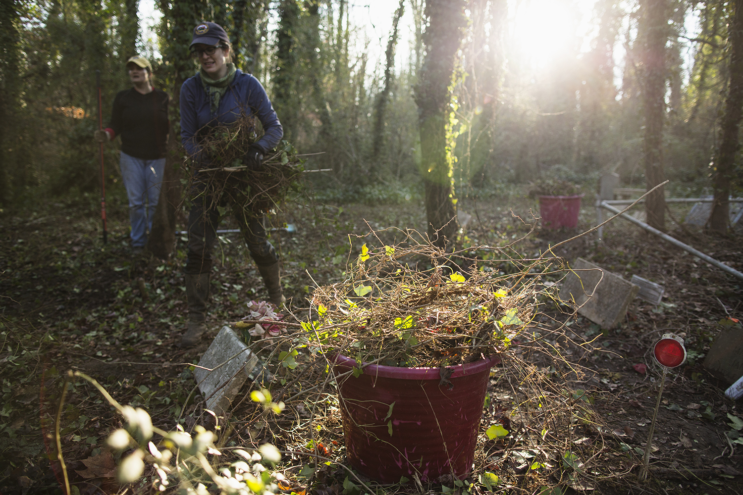 Tail end of East End Cemetery work day, January 2015.©brianpalmer.photos 2015