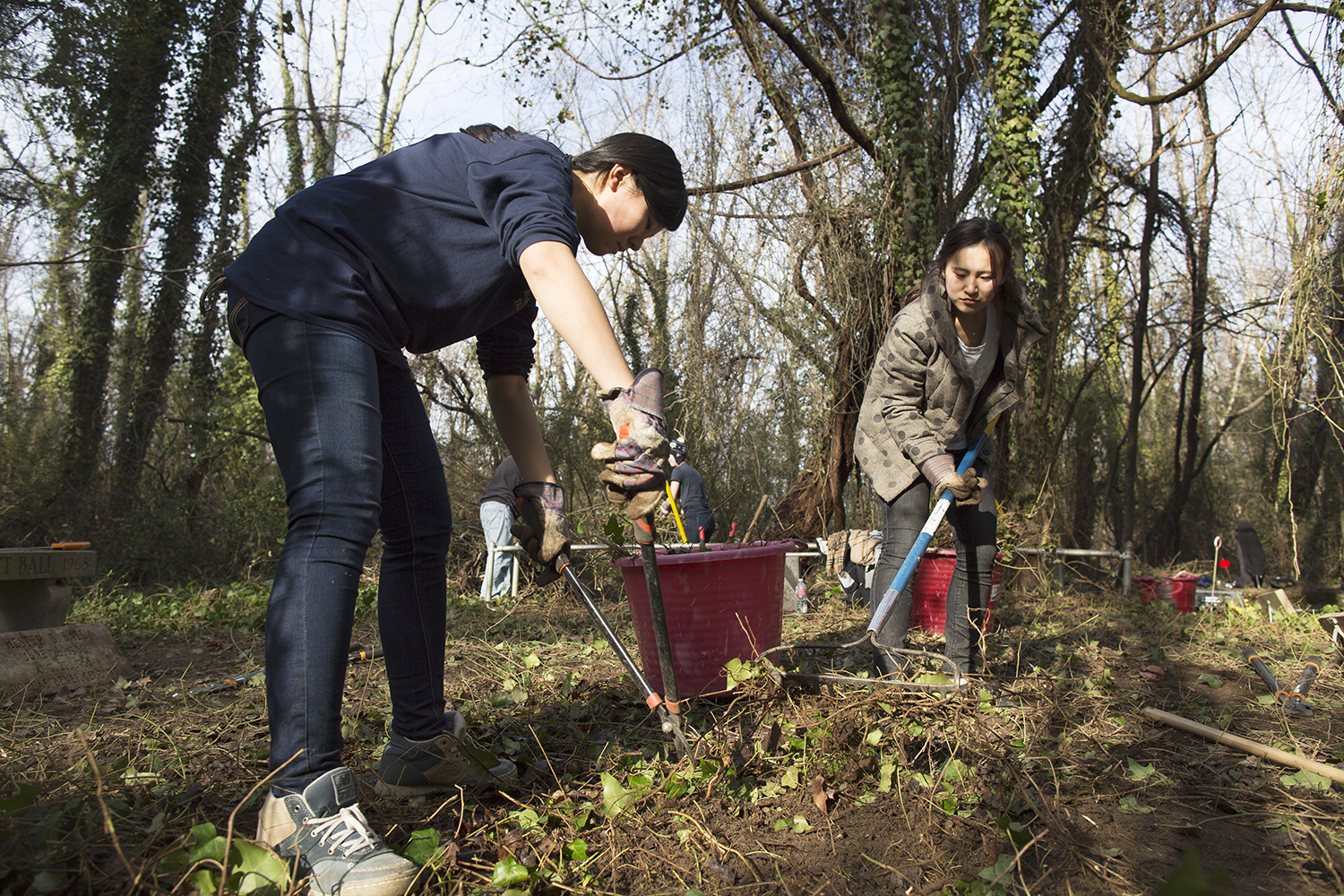Alpha Phi Omega volunteers at work, East End Cemetery work day, January 2015.©brianpalmer.photos 2015