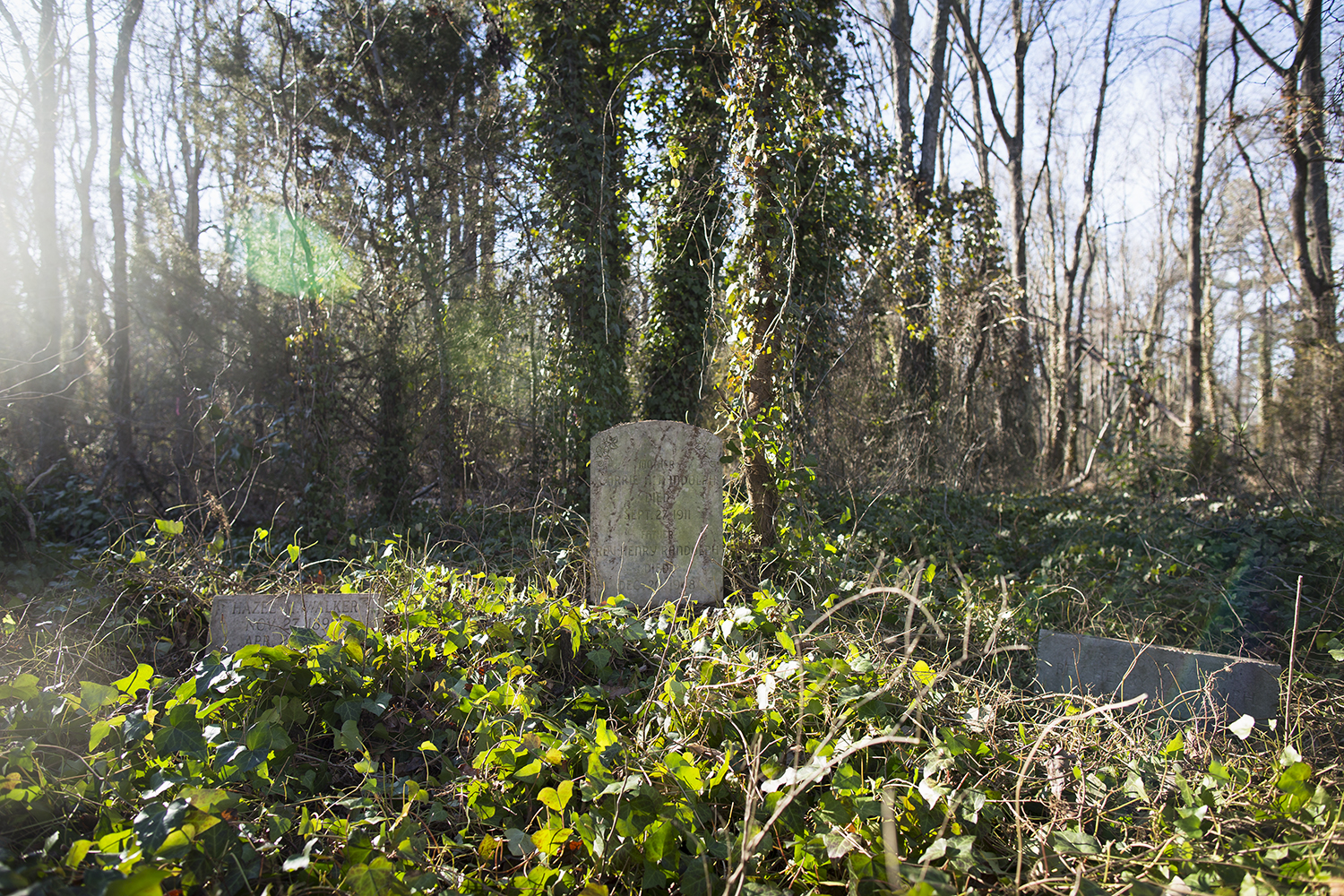 Graves of Hazel M. Walker (left), Carrie A, Randolph (center), and Rev, Henry Randolph (right), revealed by VCU students during East End Cemetery work day, Henrico County/Richmond, Virginia, January 31, 2015. ©brianpalmer.photos 2015