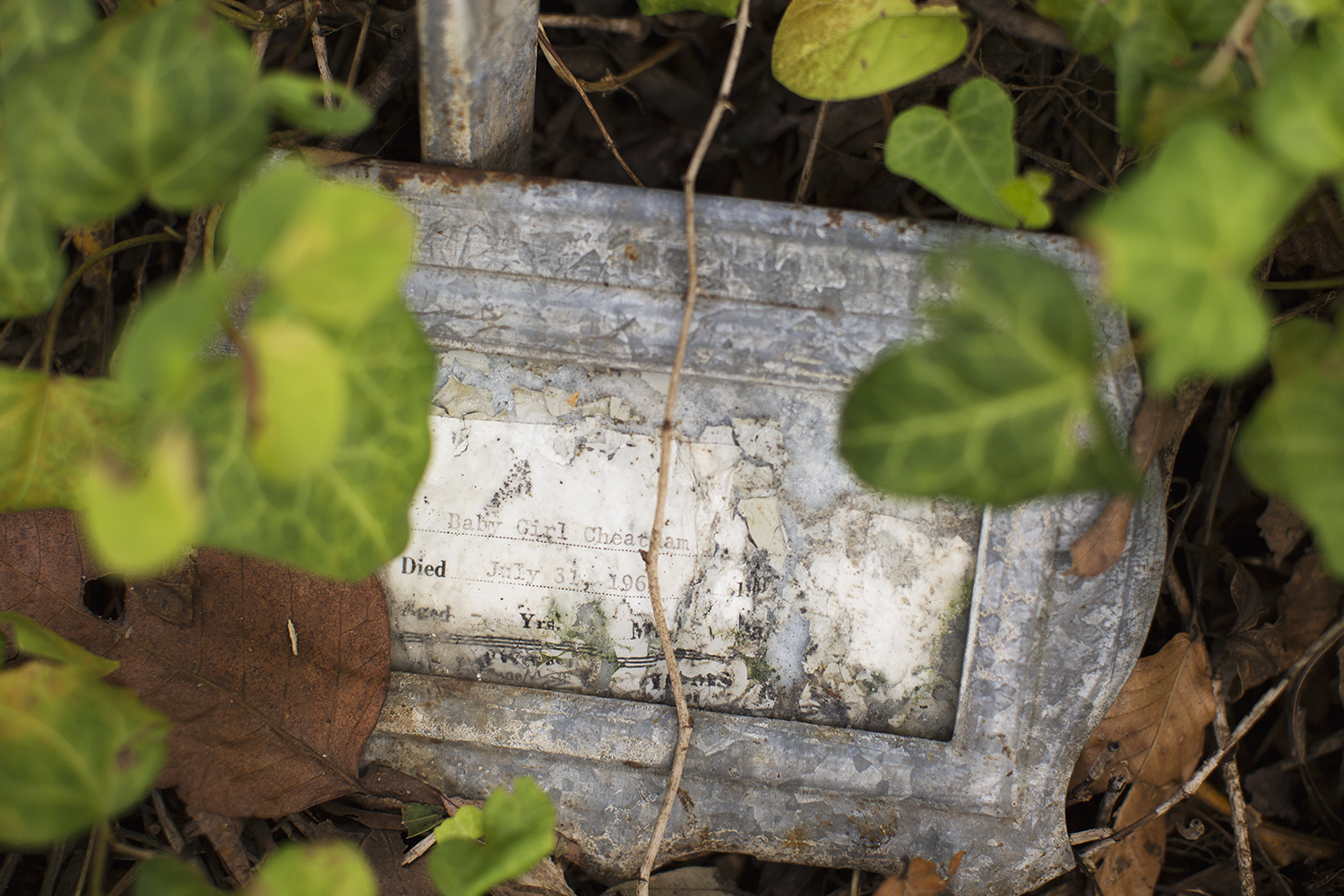 "Temporary marker for ""Baby Girl Cheatham."" East End Cemetery, Henrico County, Virginia, October 2015. Photo: ©BP"