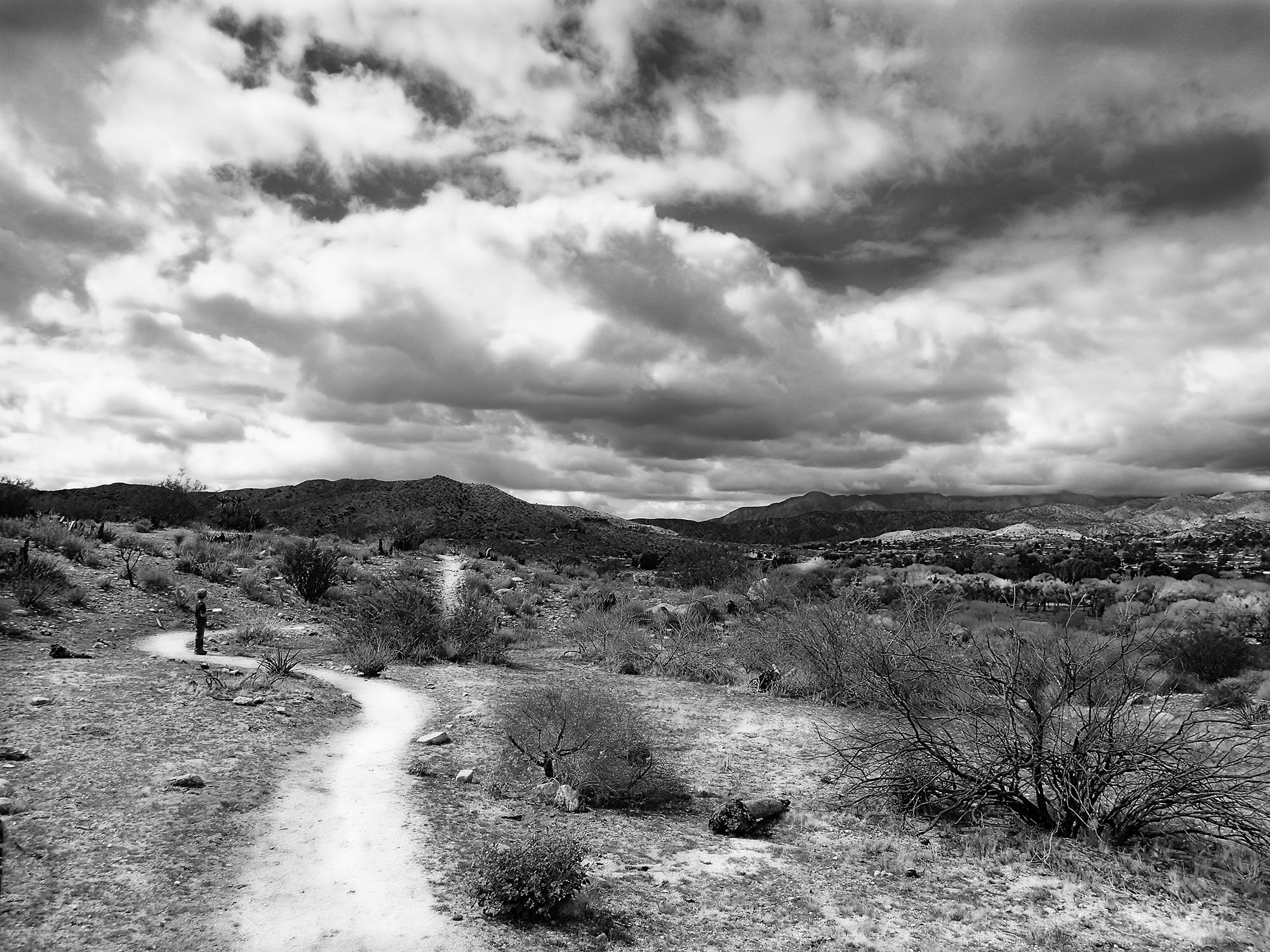 Stormy Day on Morongo Valley