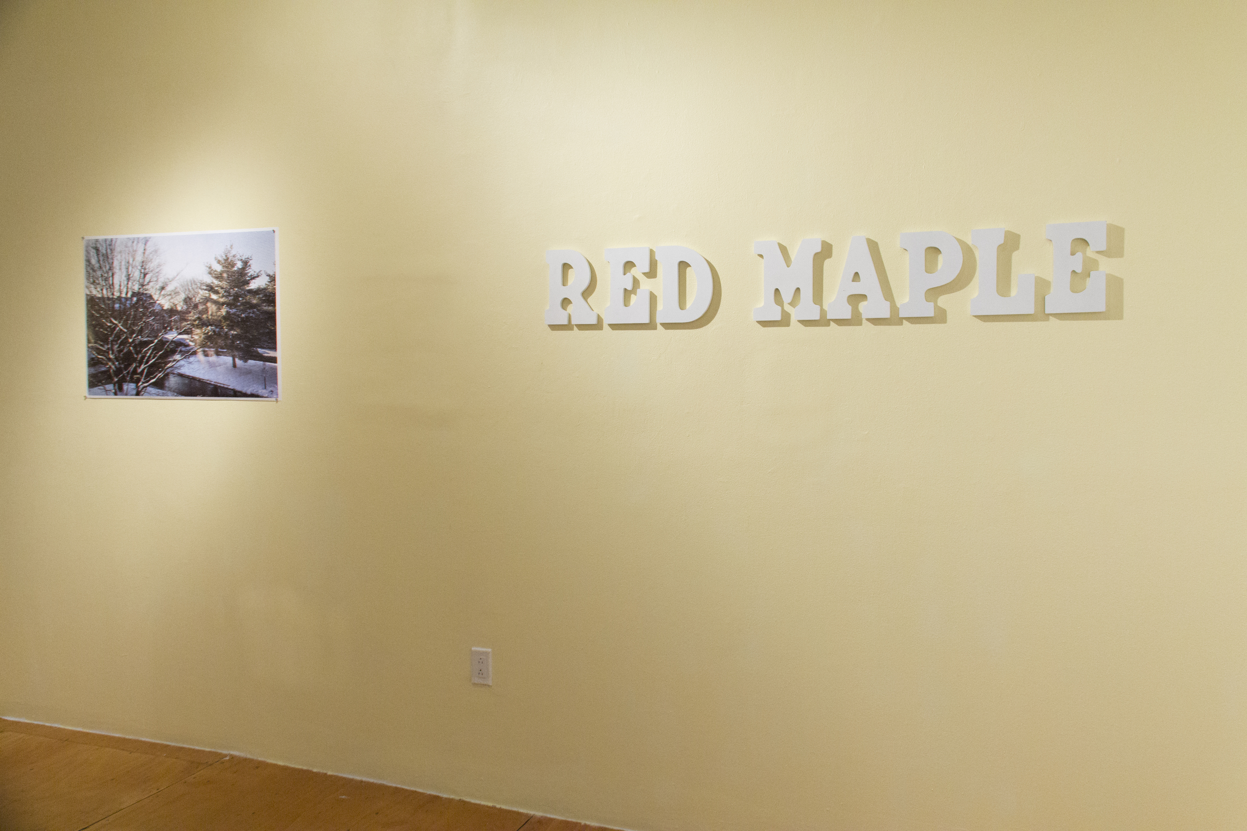 Red Maple Install-19.jpg