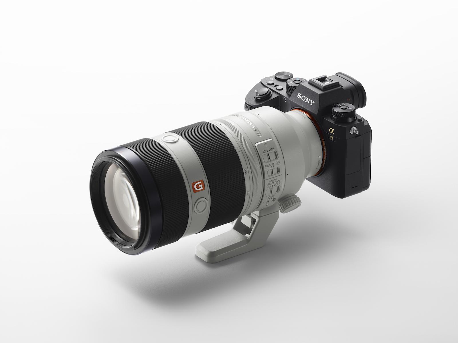 Sony FE 100-400 F4.5-5.6 GM OSS Gregg Jaden Blog.jpg