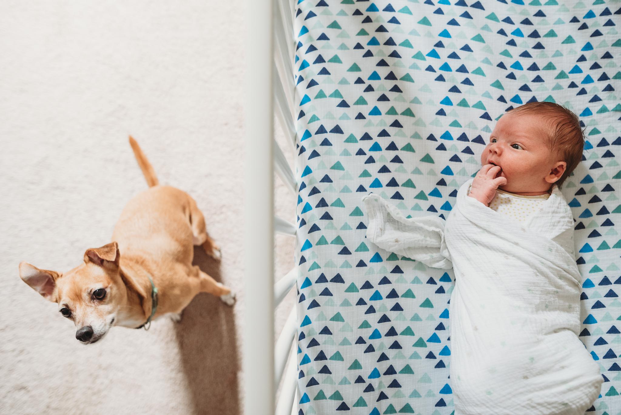 lifestyle newborn photographer in austin angela doran-9.jpg