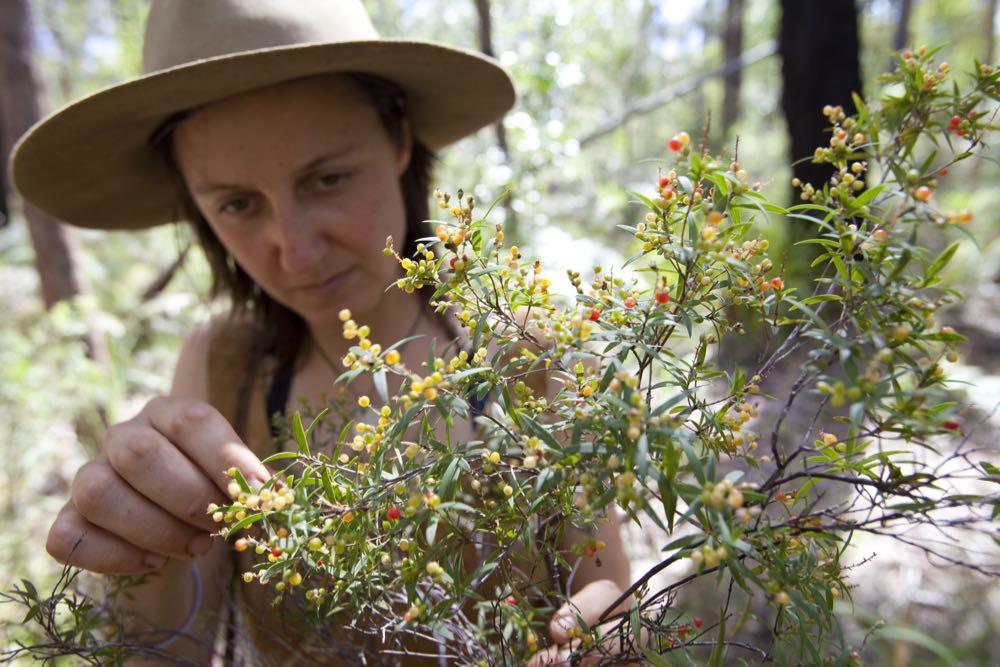 nature-rewilding-australian-geographic - 17.jpg
