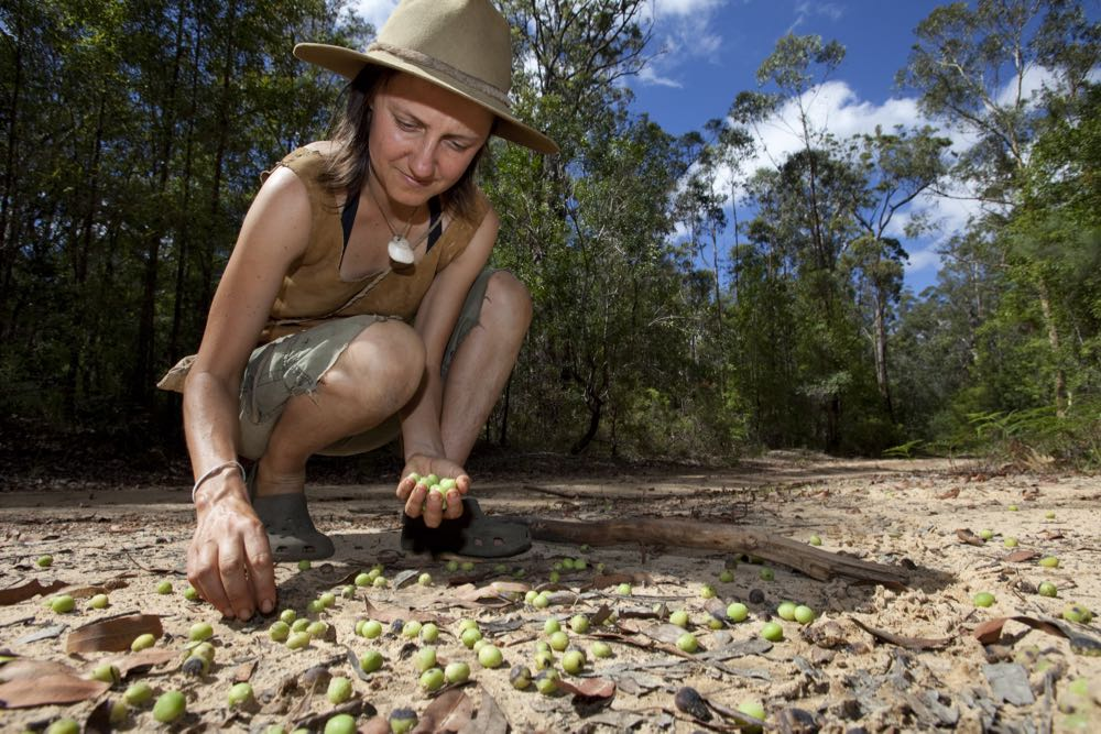 nature-rewilding-australian-geographic - 30.jpg