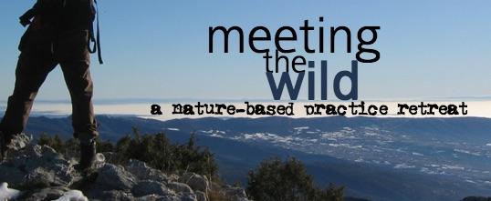Meeting the Wild2.jpg