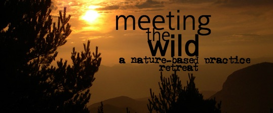 Meeting the Wild.jpg