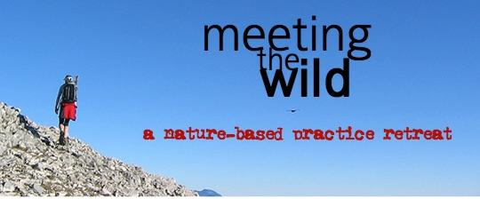 Meeting_The_Wild___Eco_Dharma.jpg