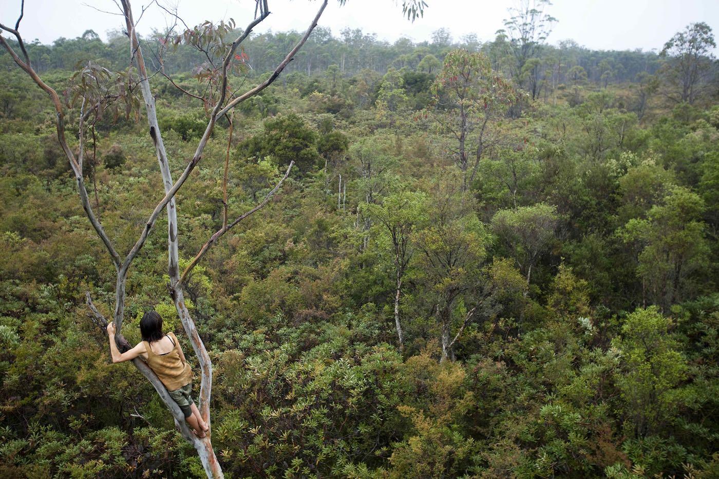 nature-rewilding-australian-geographic - 173.jpg