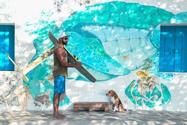 The #future is now #foil #kiteboarding  #India #foilboarding  #oceanlife #sustainability #cleanenergy @aquaoutback  #foiling #aquaoutback #progression #windenergy