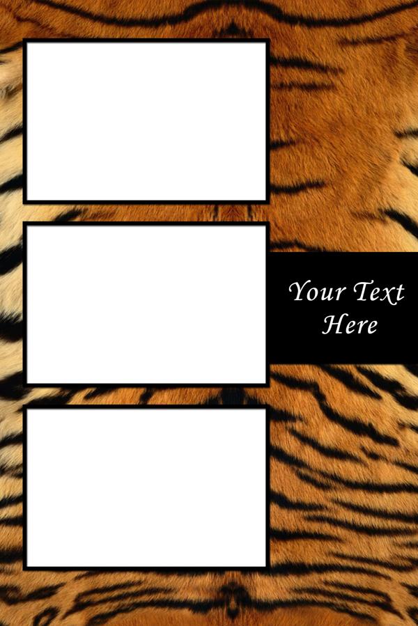 Texture_Tiger-V-3P.jpg