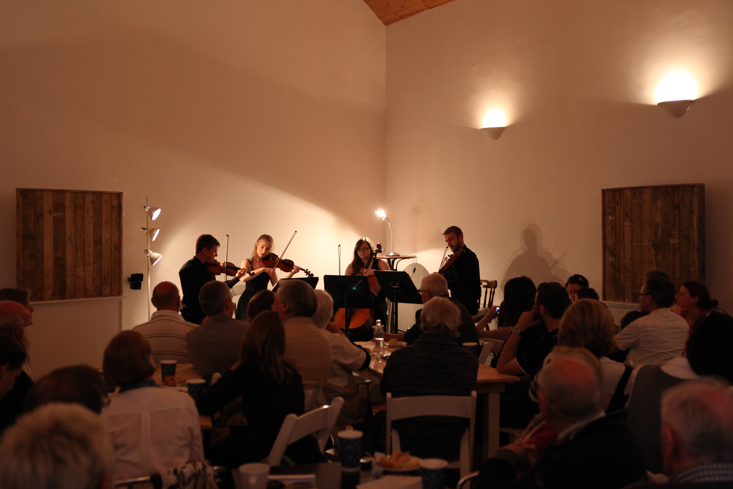 KILLALOE MUSIC FESTIVAL  283.jpg