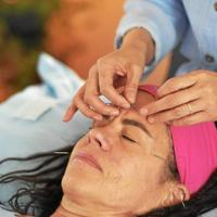 The Experience of Cosmetic Acupuncture