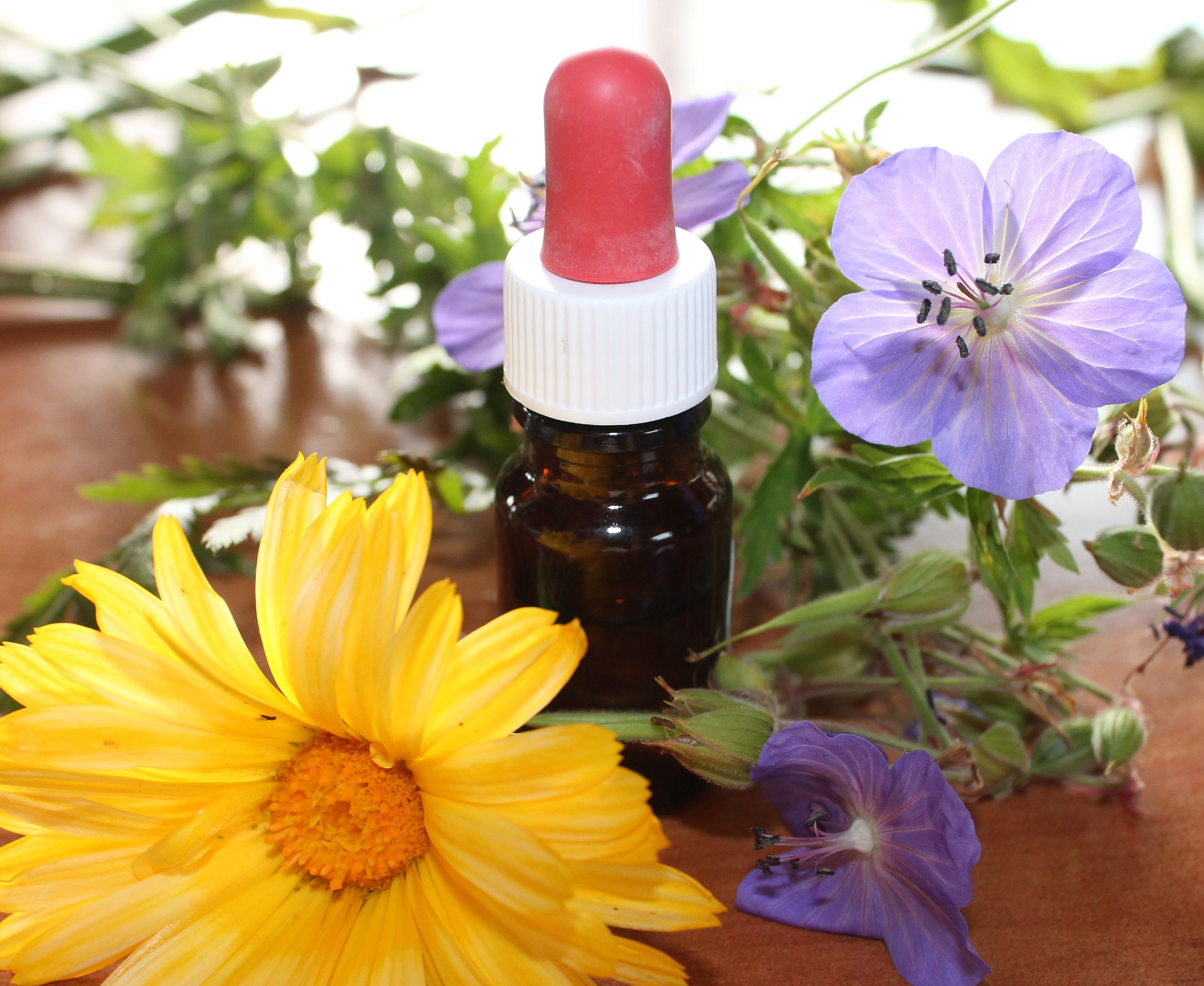 Homeopathic Remedies for Everyday Uses - With Sue King