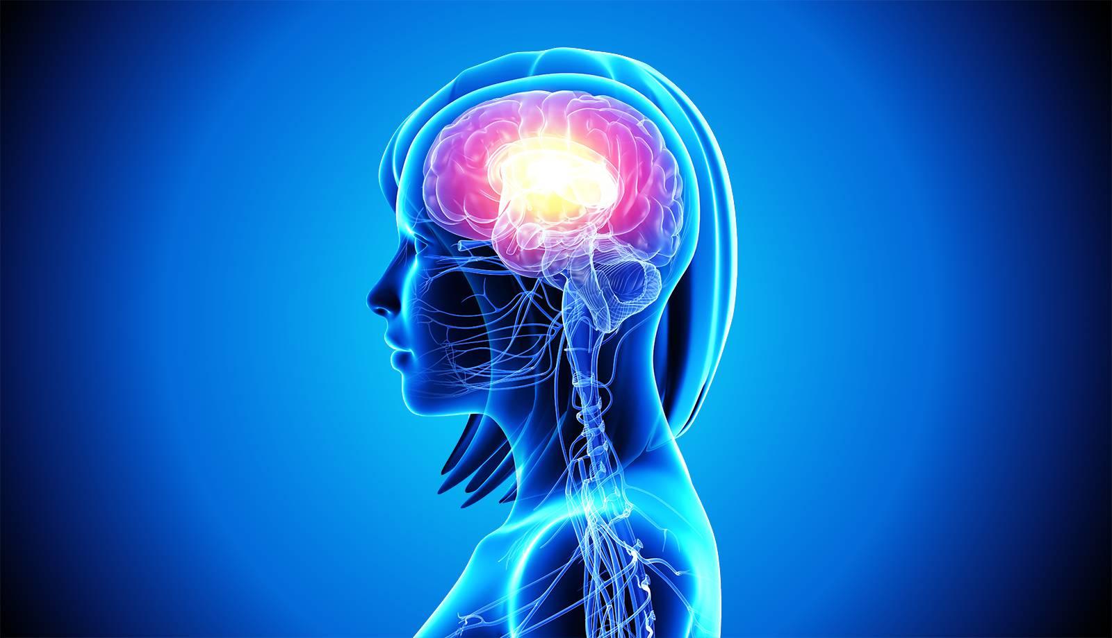 bhakti-cranial-cranio-sacral-therapy-stewart-snyder.jpg