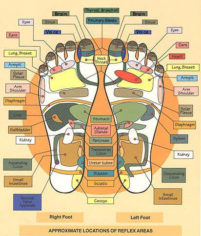 reflexology main line