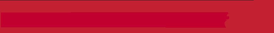 Kamaaina Nissan logo.png
