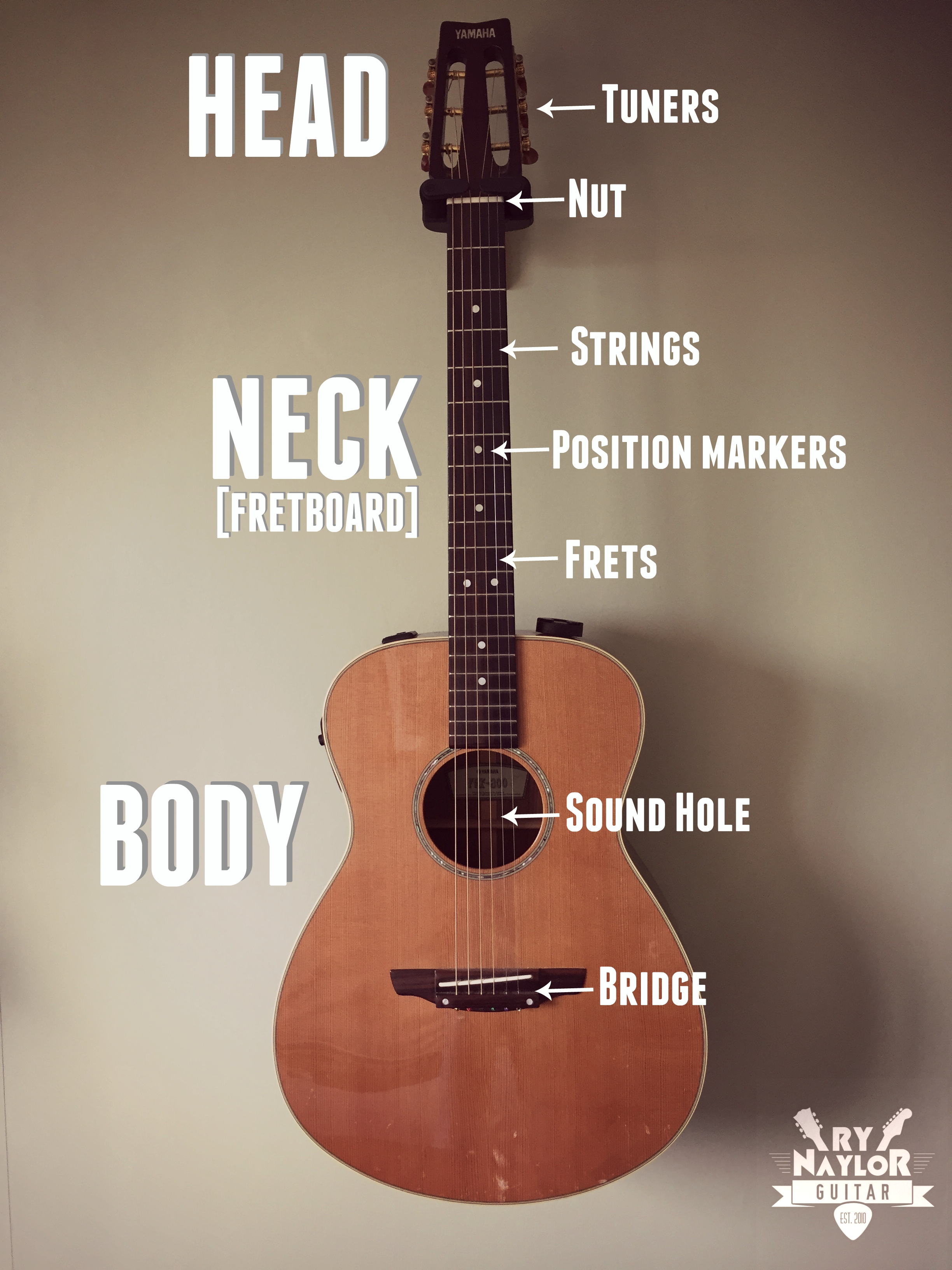 The Parts of the Acoustic Guitar