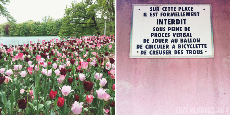 Tulips & signage in Parc de la Tête d'Or