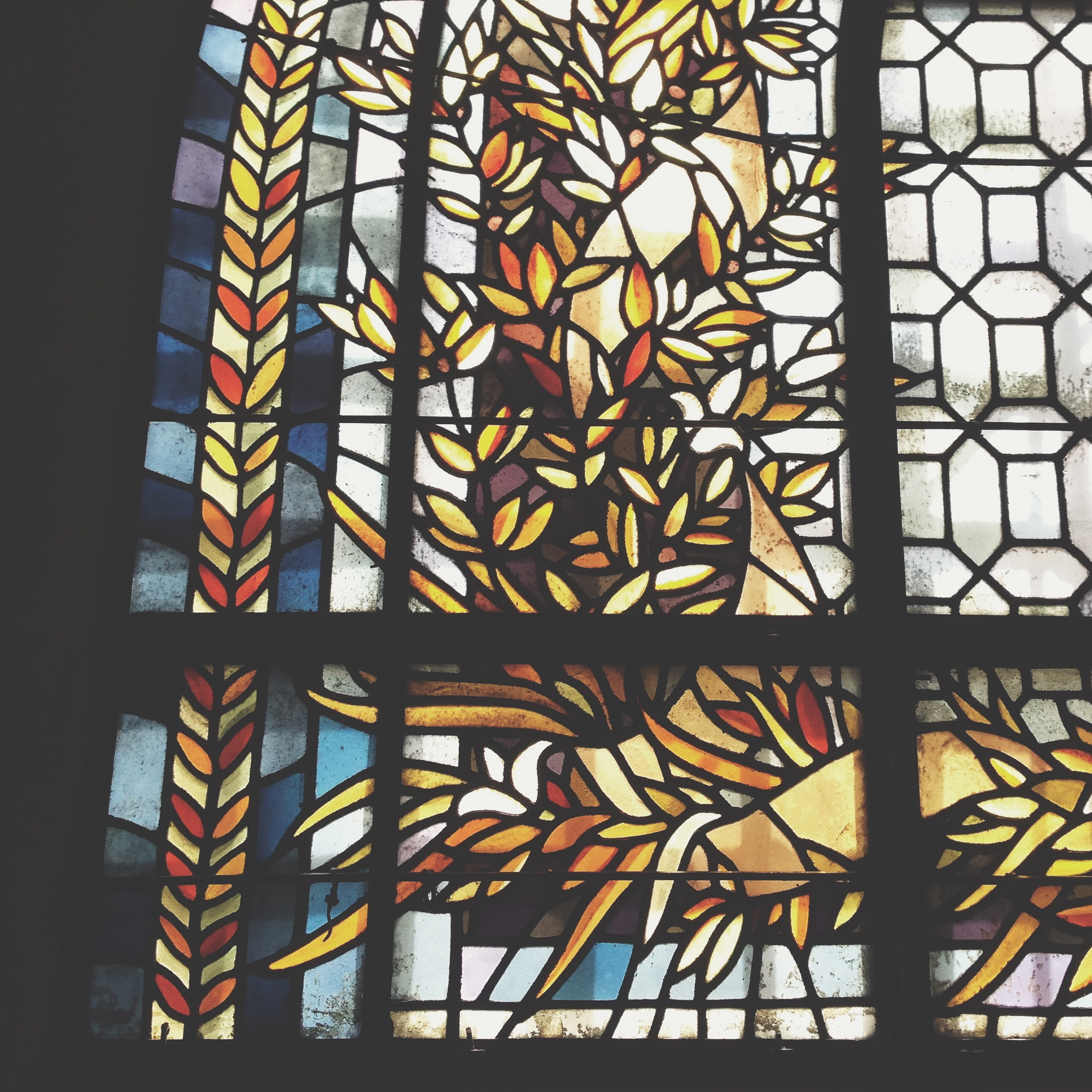 Loved this stained glass in the Basilica of Saint Denis