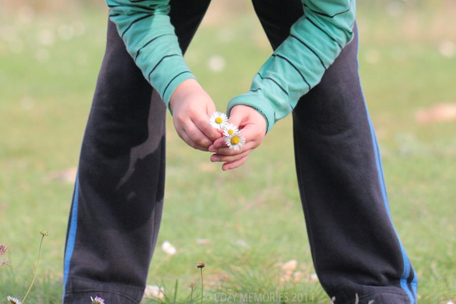 here's my youngest picking me a tiny bouquet of daisies, sweeeeeeeeeeet !