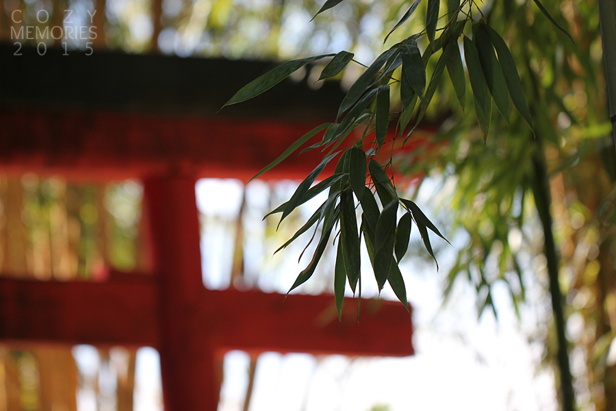 a torii (  鳥居 ) , Japanese gate, most commonly found at the entrance of or within a Shinto shrine.