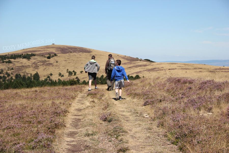 walking among heather in bloom (more photos later this week) - Left to right : P (13), hubby (40), U (11)