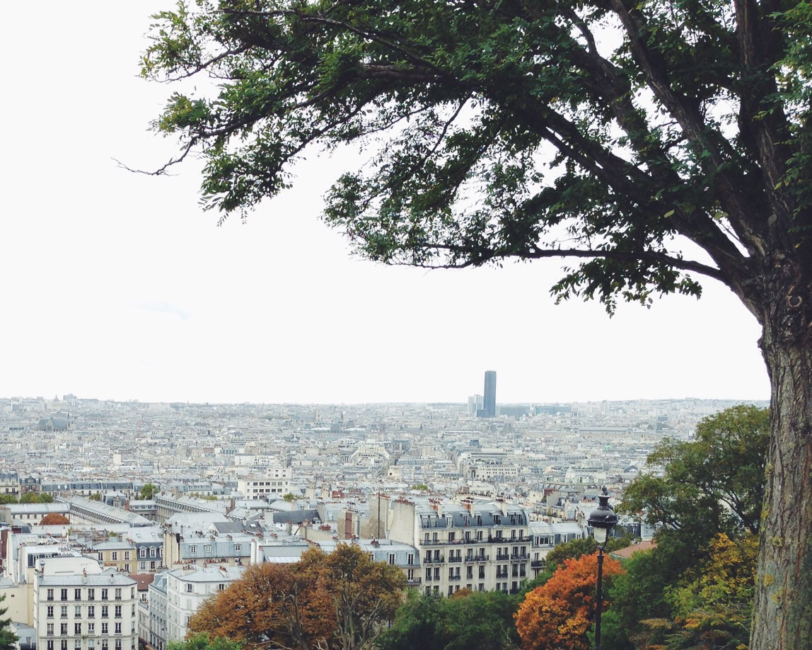 City view from the Sacré Coeur basilica, on top of Montmartre