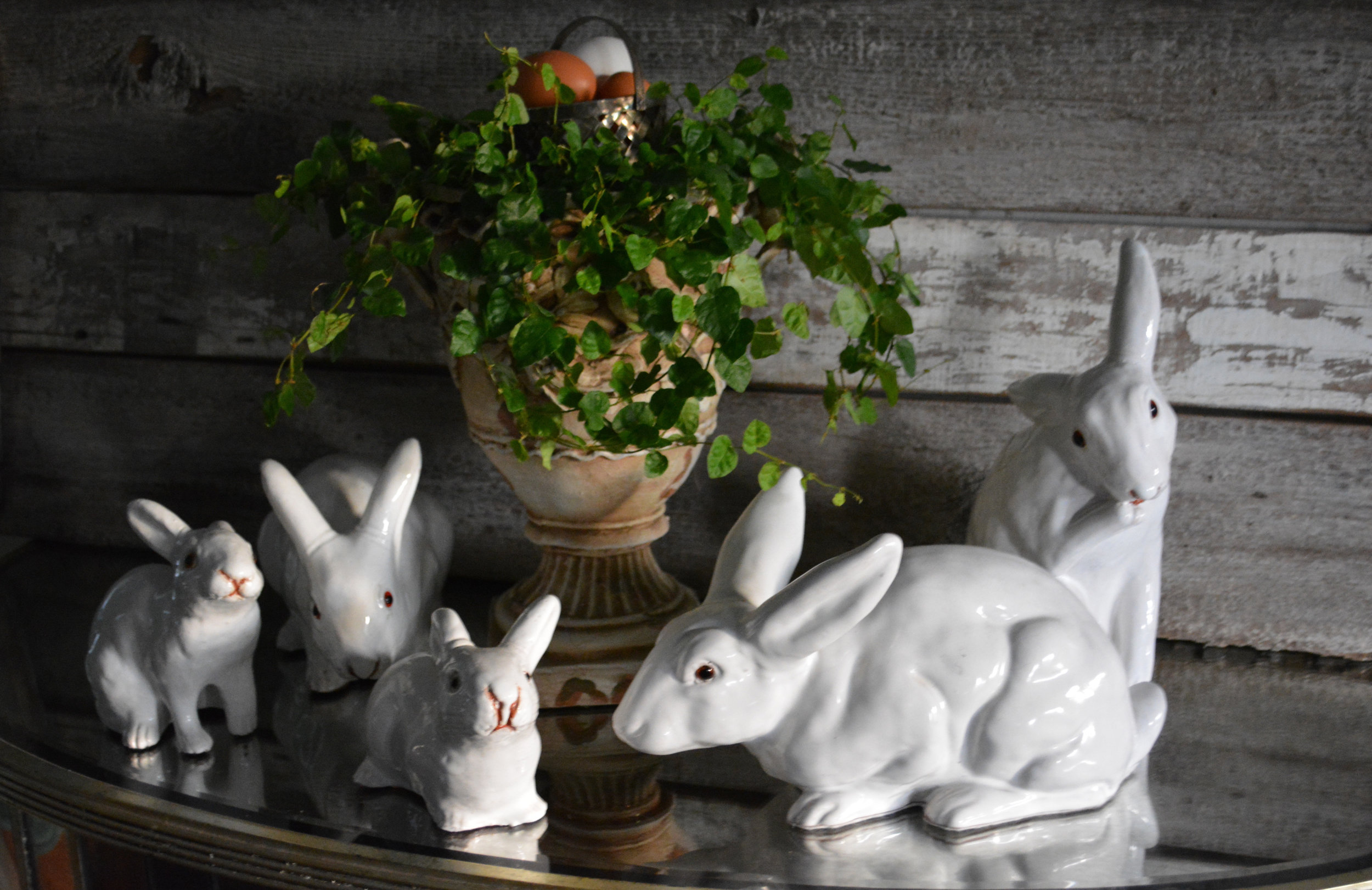 Bavent Rabbits for Easter
