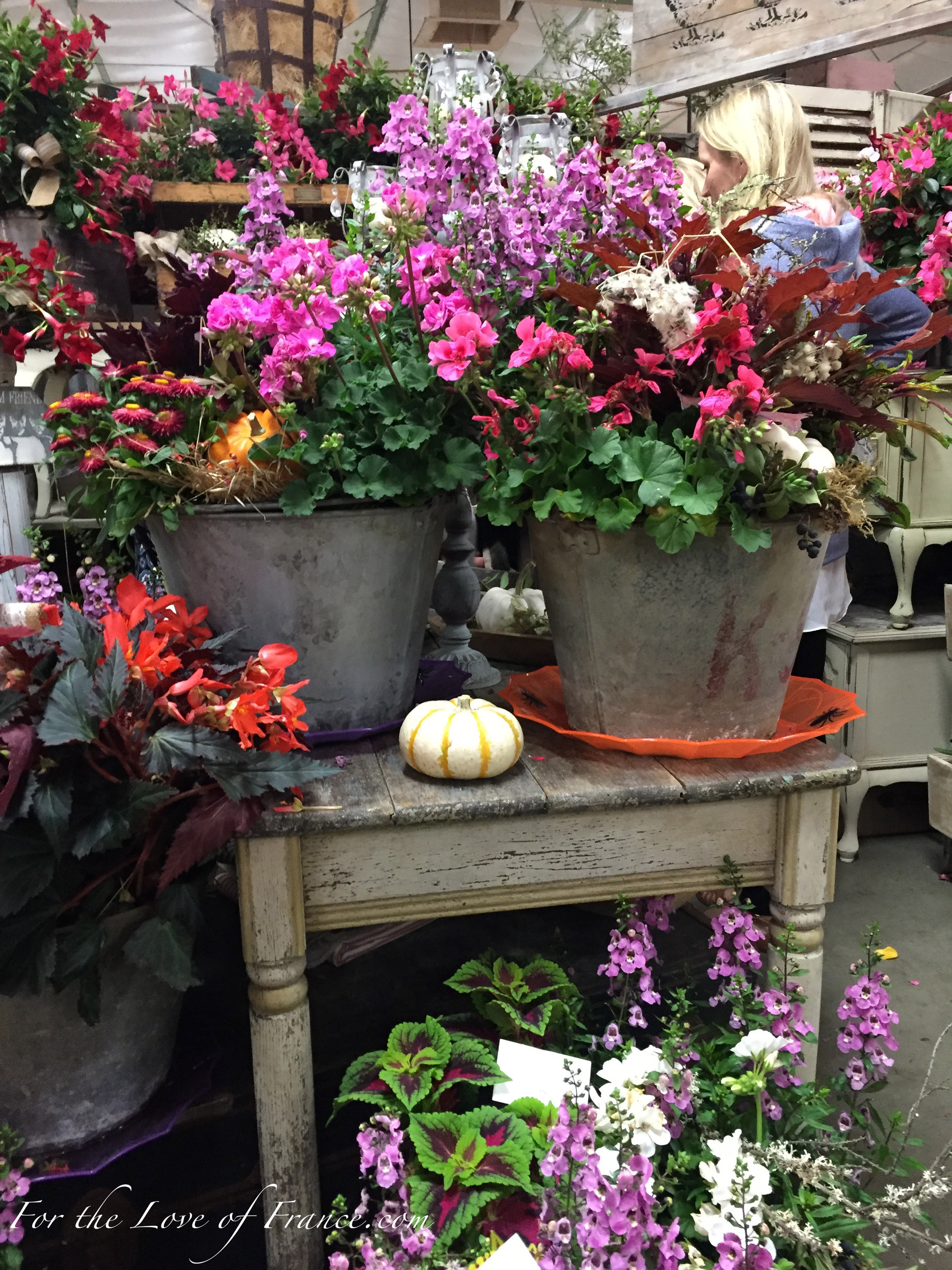 Beautiful fall flower decor