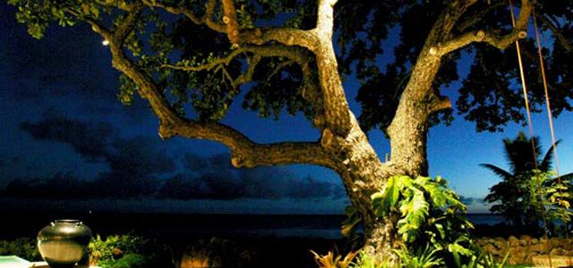 Premier Outdoor Living & Design landscape lighting services in Florida.