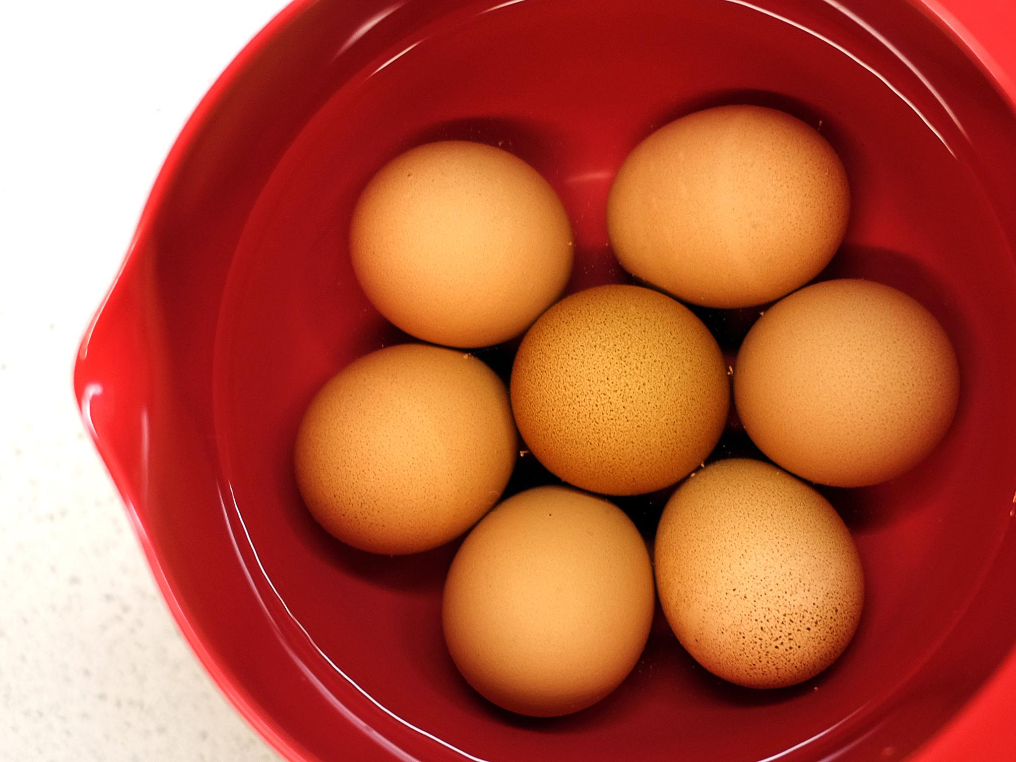 EggsInWarmWater.jpg