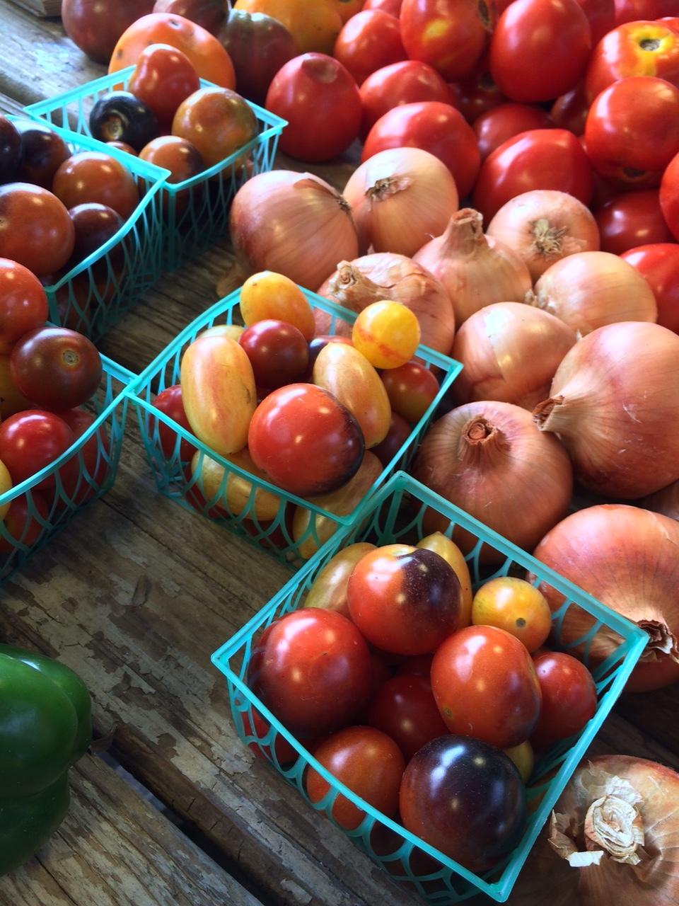 tomatoes nfm.JPG