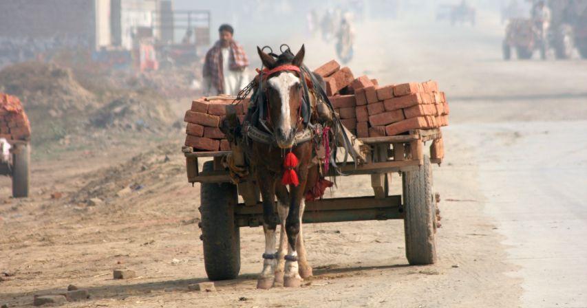 Horse with cart of bricks www.BrookeUSA.org.jpg