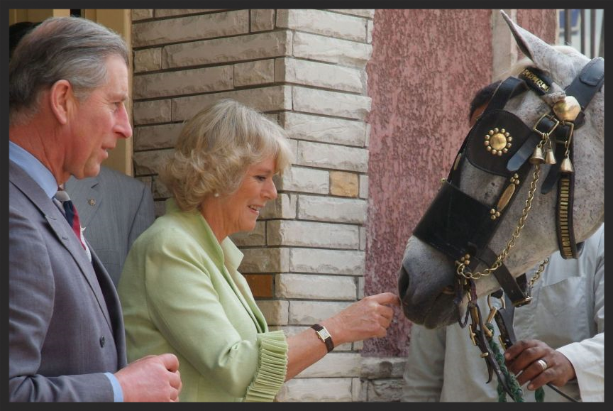 His Royal Highness The Prince of Wales and Her Royal Highness the Duchess of Cornwall visit the Brooke's work in Egypt.