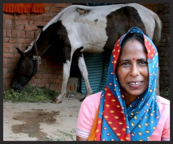 Indian woman with horse www.BrookeUSA.org.jpg