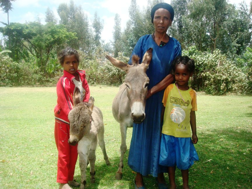 Ethiopian mother and children with donkey.jpg