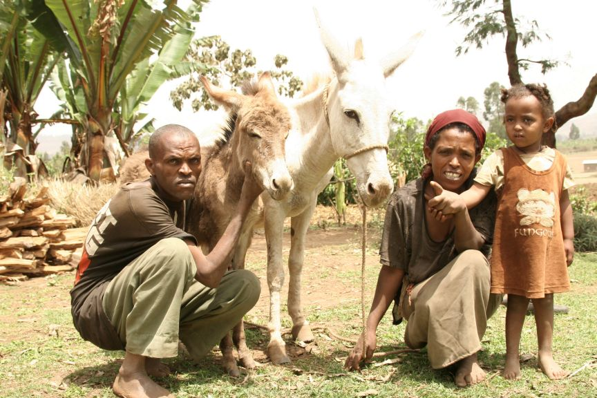 Ethiopian family with mare and foal.jpg