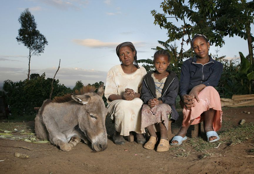 Ethiopian mother and daughters with donkey.jpg