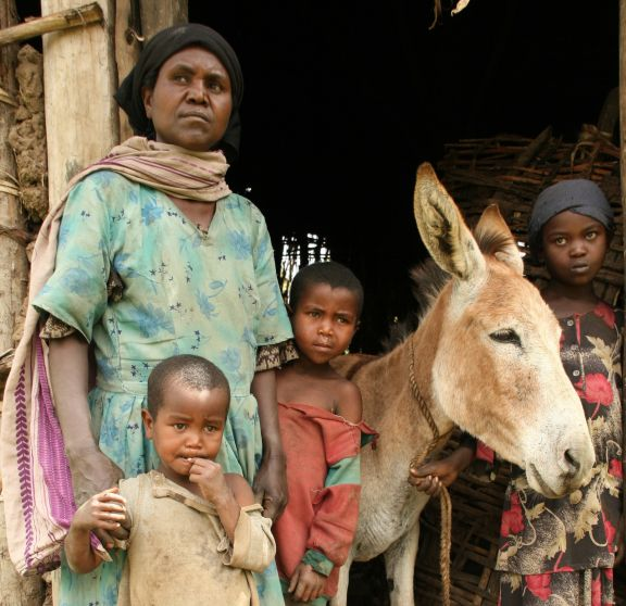 Families like this one in Ethiopia are often completely dependent upon their working equine to provide a livelihood.