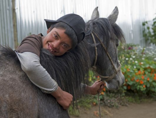 This is Gabriel and his mare, Golondrina, in Guatemala.  Gabriel's family earns a living with Golondrina as she transports cauliflower and other produce.  When she lost her appetite Gabriel's father contacted a Brooke veterinarian who discovered sores in her mouth caused by eating dry food.  He recommended soaking the mare's food in water before giving it to her and the problem quickly cleared up.